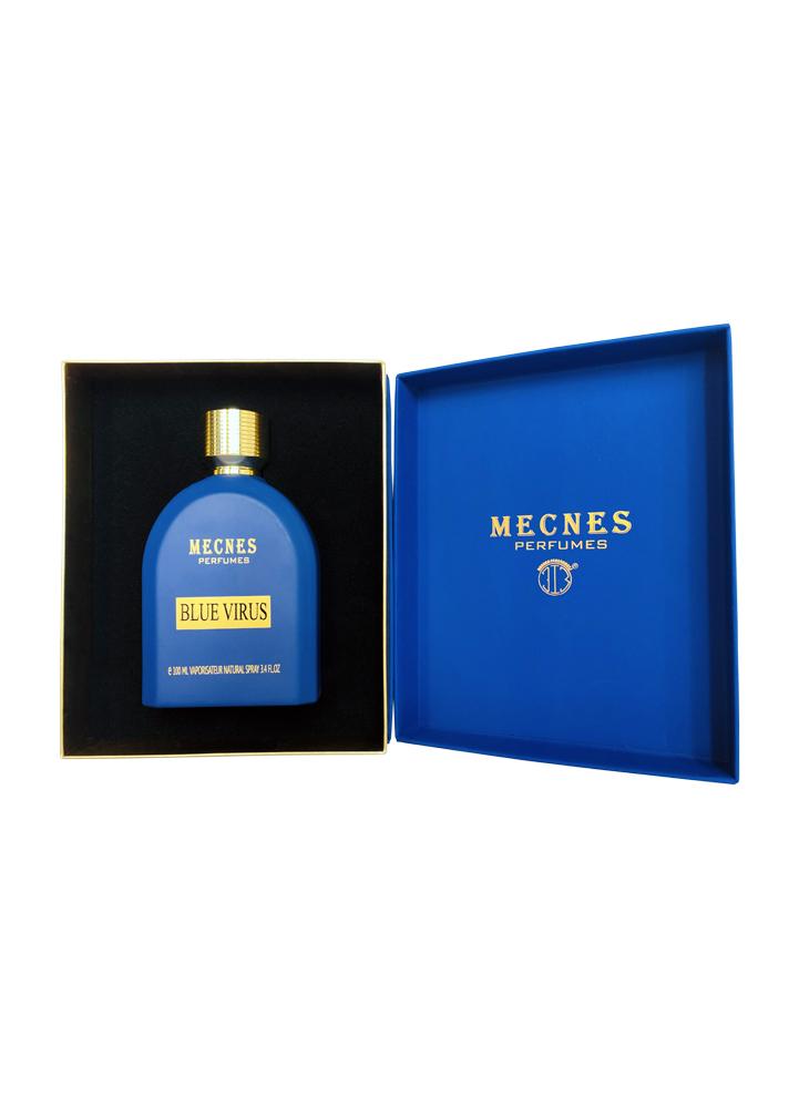 MECNES